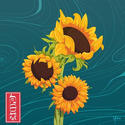Yann faure sunflower