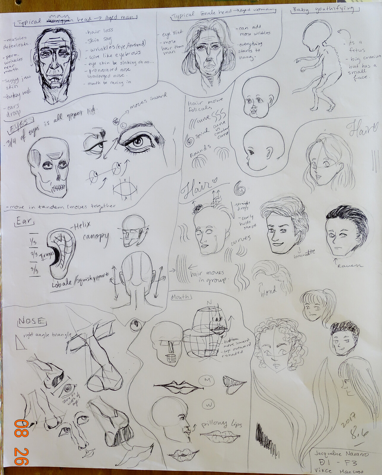 Project 9: draw the facial features of the human head.