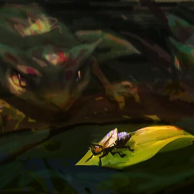 Owen melisek cat frog