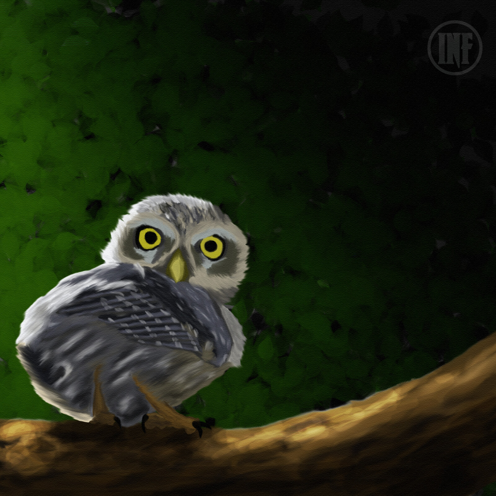 2hr Paint #8 Owl