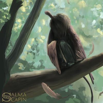 Salma scapin chiemre spatule rosee et ouanderou