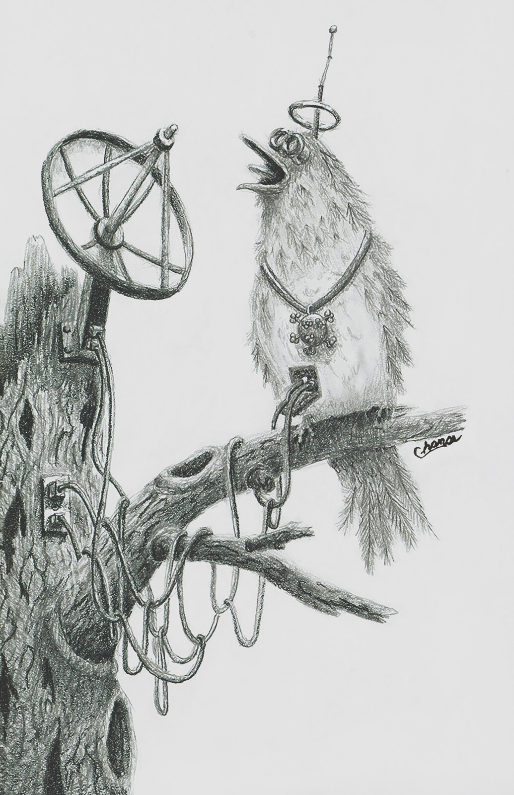 5g corona bird