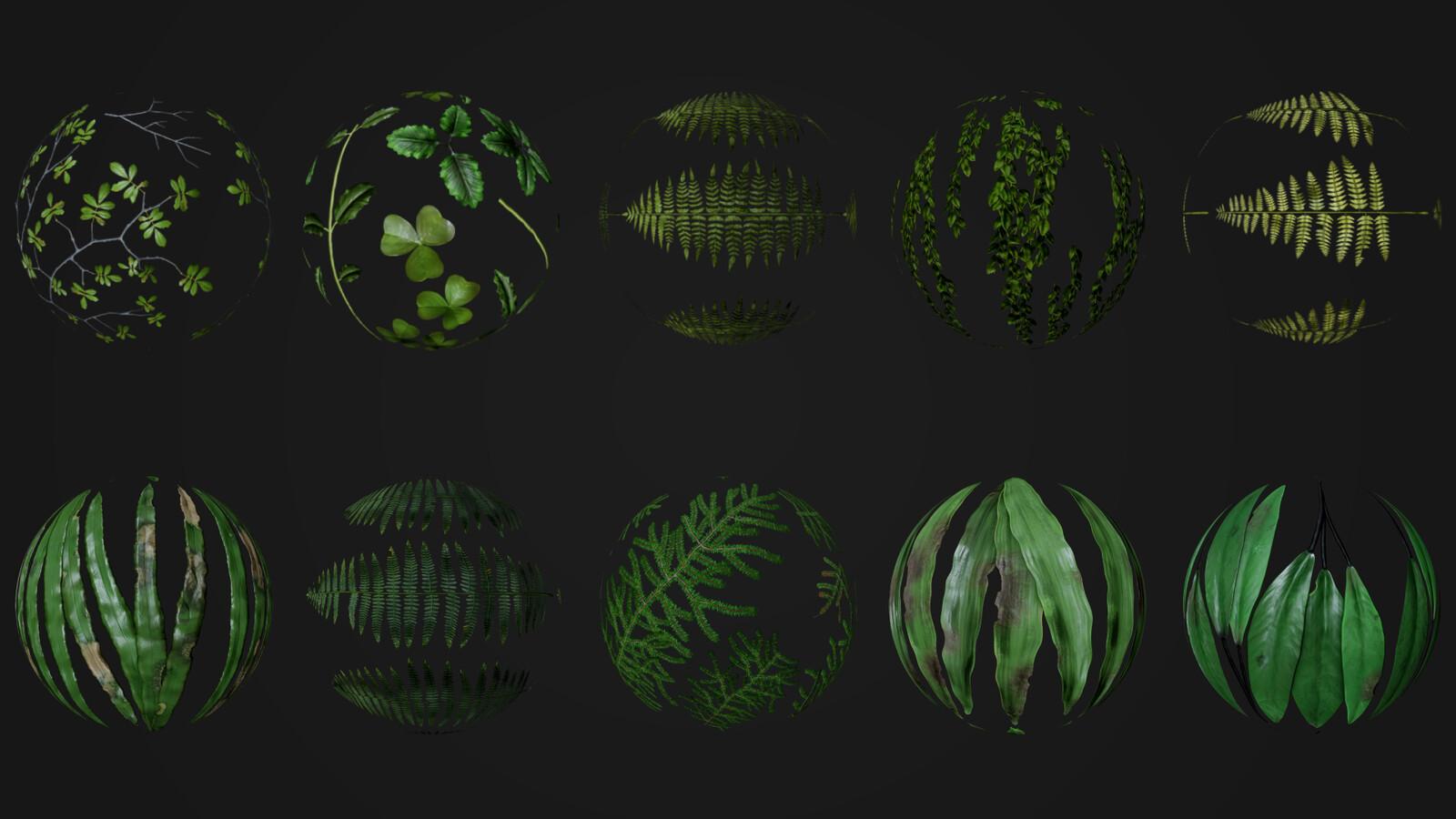 Foliage Textures