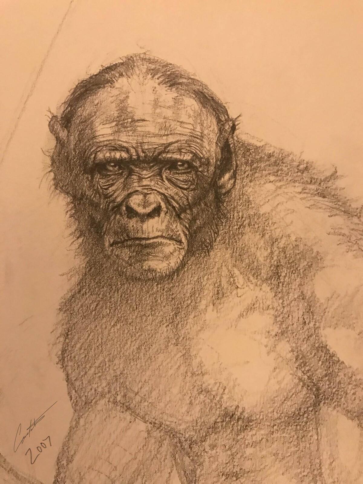 ape man head detail