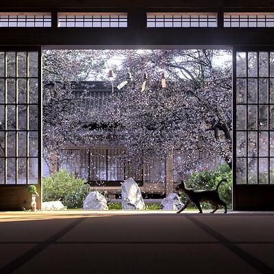 Tatami Perspective
