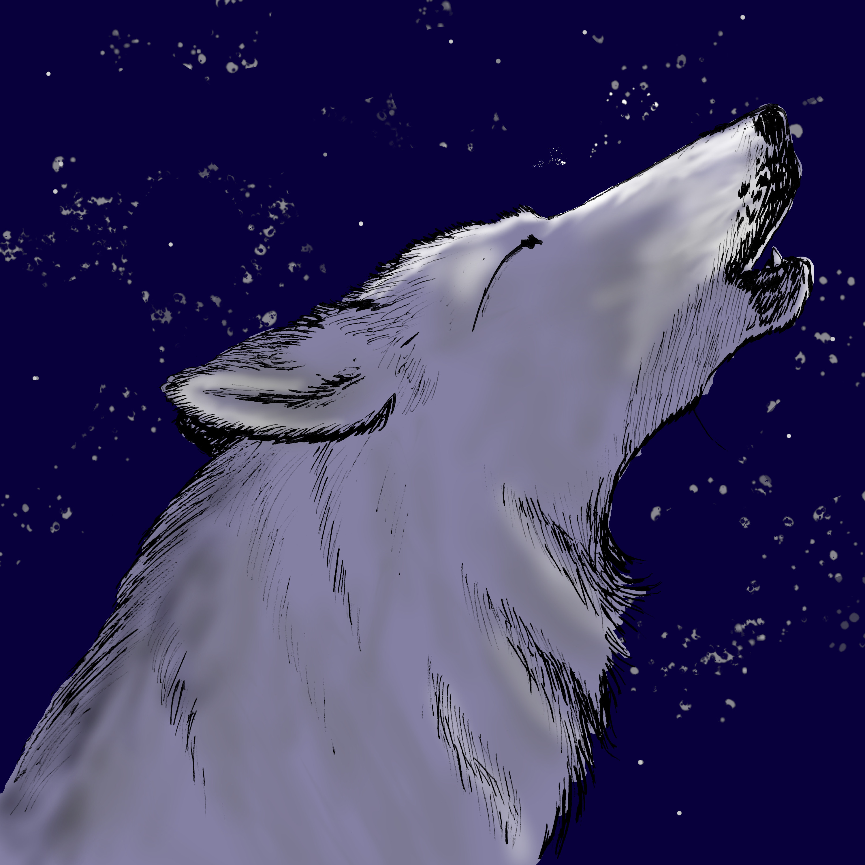 Howling wolf, somewhat colored