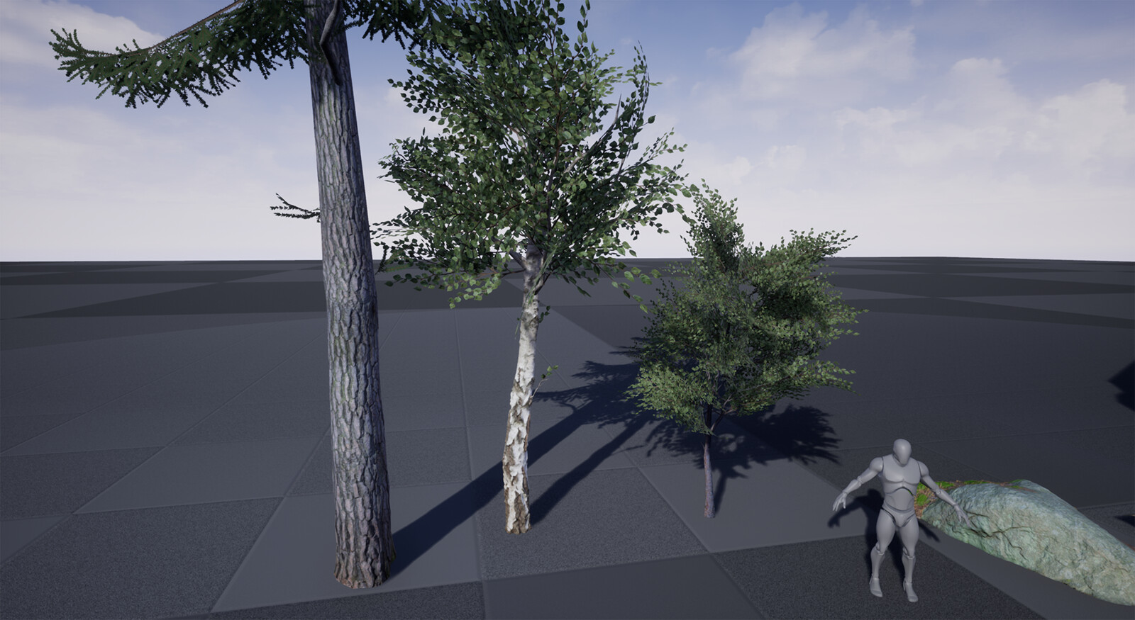 The three trees used in this tree filled environment. The pine and the middle birch was made with photogrammetry.