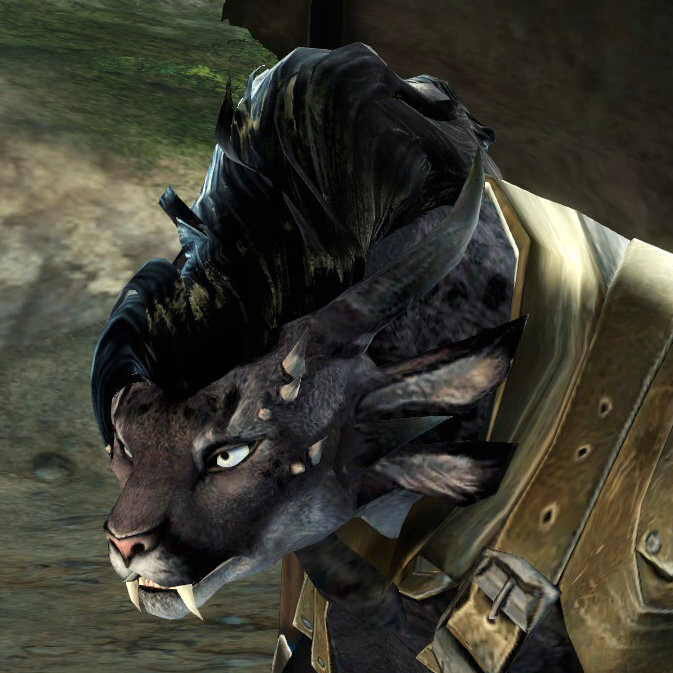Reference screenshot from Guild Wars 2