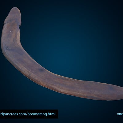 Ross franks boomerang 001