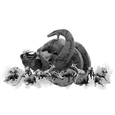 Olivia hamza astutedominator python icon v003