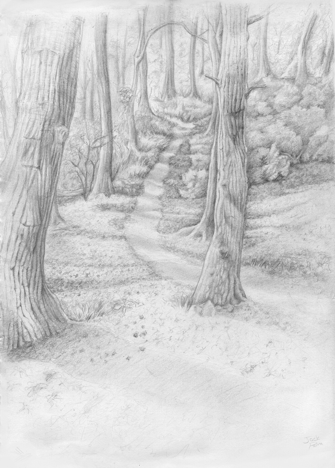 County Park near me. One of my Numerous drawings continuing my fascination with Paths.