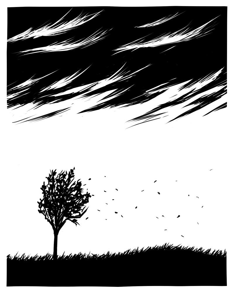 """""""windy"""""""