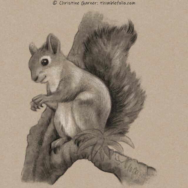 Squirrel on a toned paper background