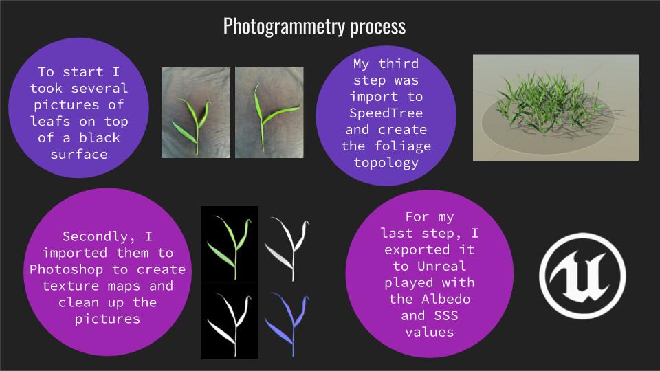 Photogrammetry process