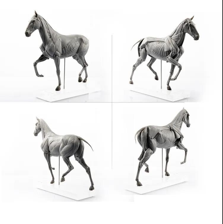 EVOLUTIO PVC - HORSE