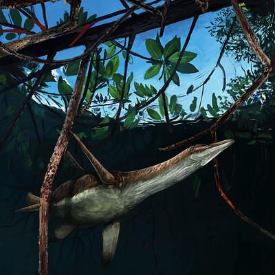 Brennan stokkermans mangroves
