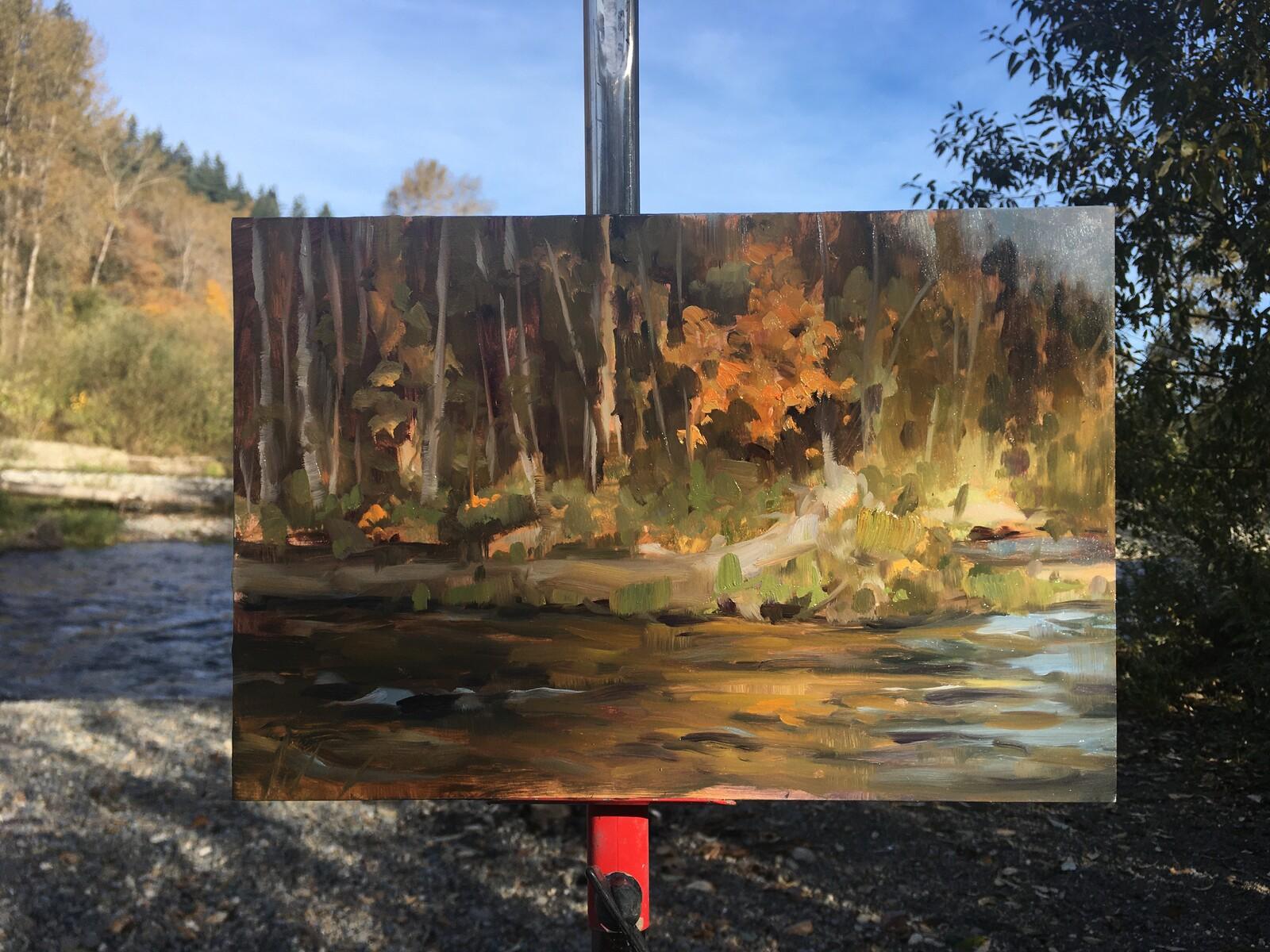 Plein Air Oil Paintings