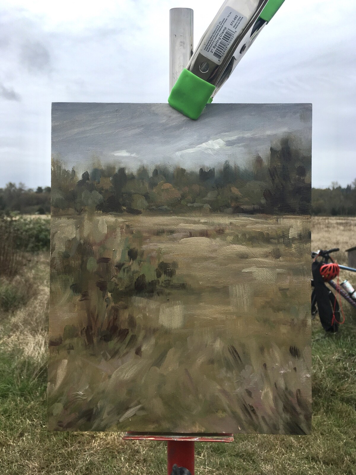 Fall Meadows