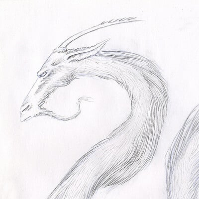 Miha rinne dragon3