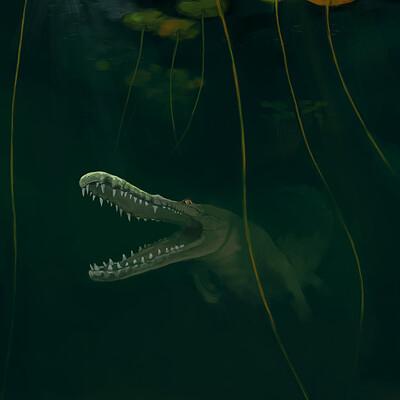 Roxane lapa alligator