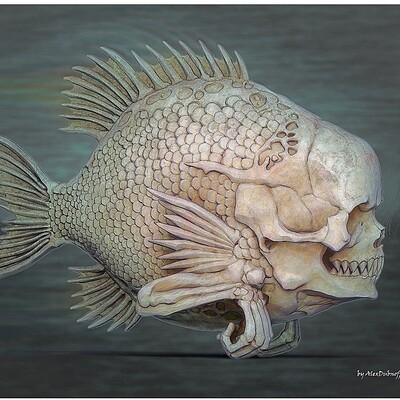 Alex dubnoff fishhead2l