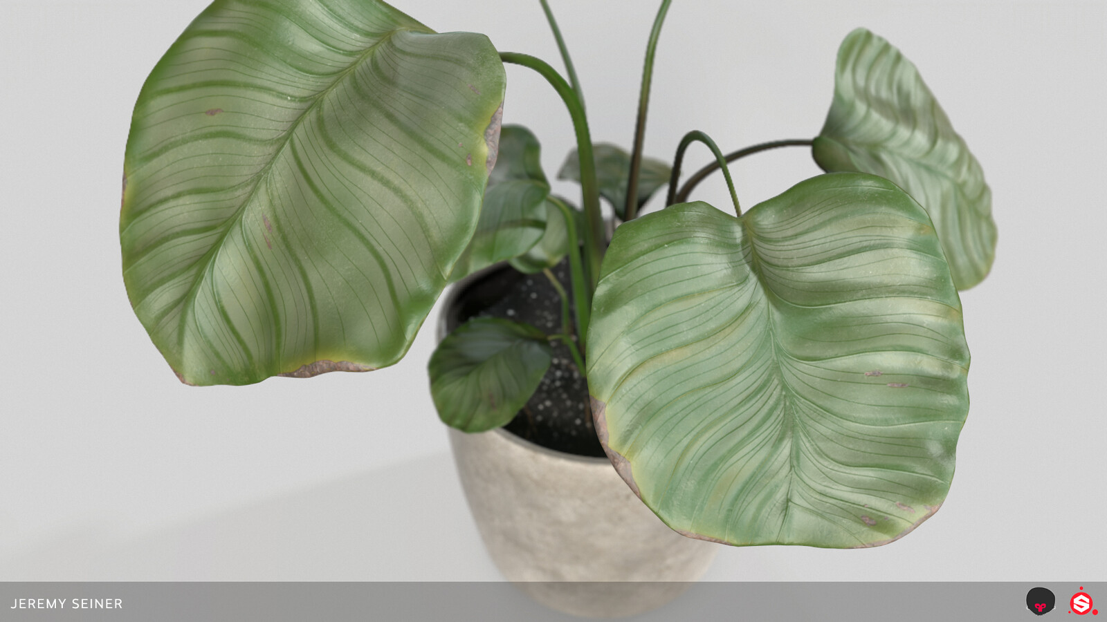 Closeup of leaves rendered in Marmoset.
