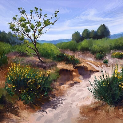 Madeleine bellwoar dunes as