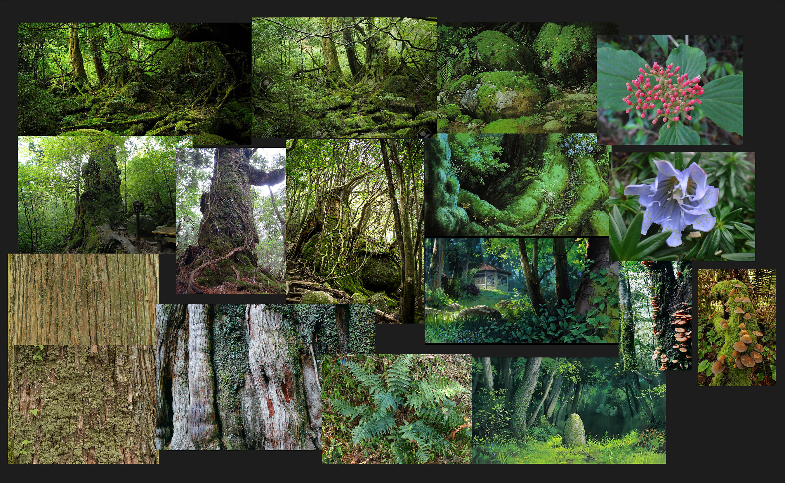 My references shows green dominance in the environment. I used the flowers and mushroom to create some spot of colors.