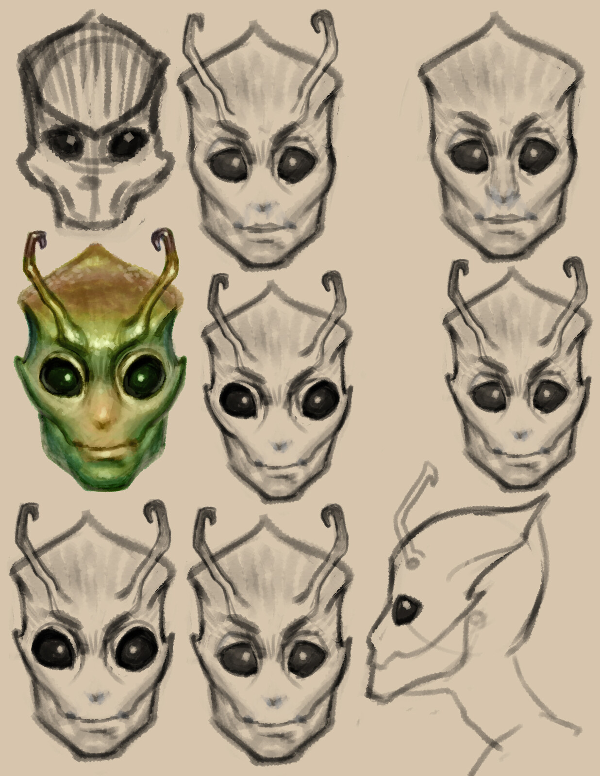 final head sketches, focusing on bringing out skull structure in beetle like ways