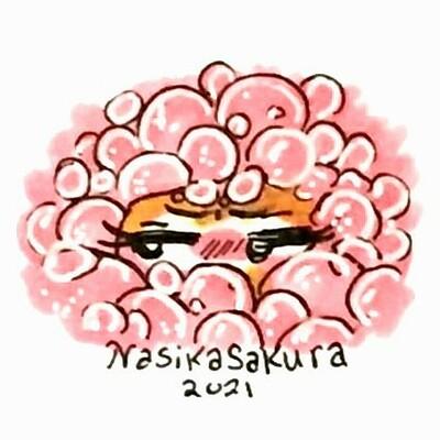 Nasika sakura 20210113 183329 6