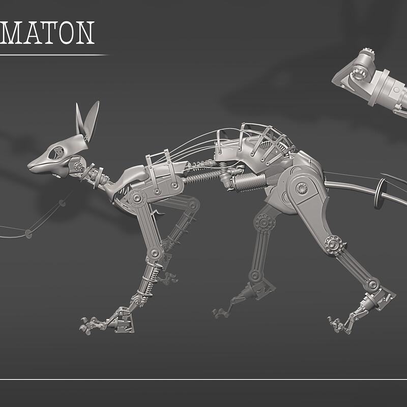 Cat Automaton
