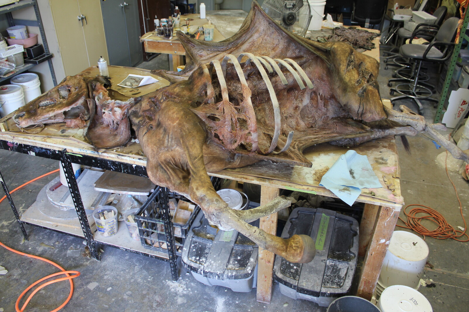 Horse Corpse Fabricated Prop