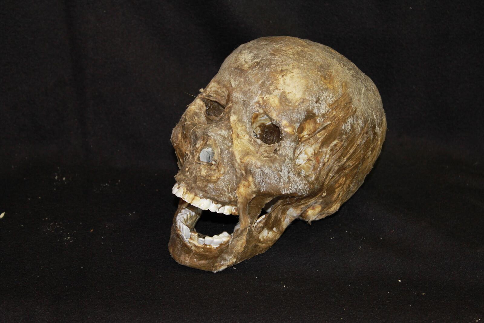 Skulls ( Custom and Commercial )