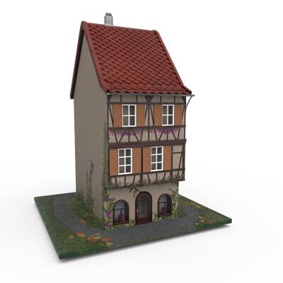 Pelin erturk snowyhouse model17