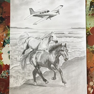 Addyson h horsesrunningonbeach