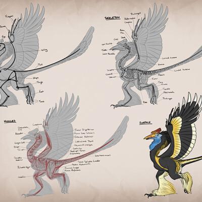 Amanda blatch amandablatch creatureanatomy dinosaurxbird