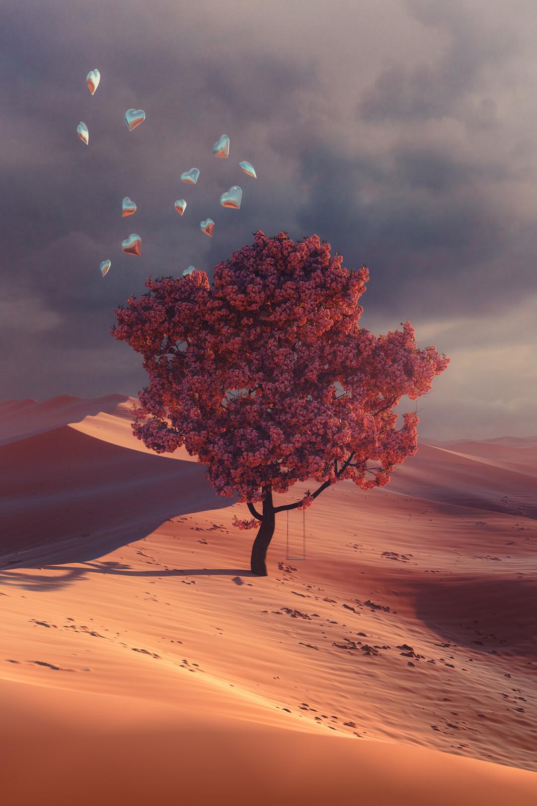 Desert's Dream