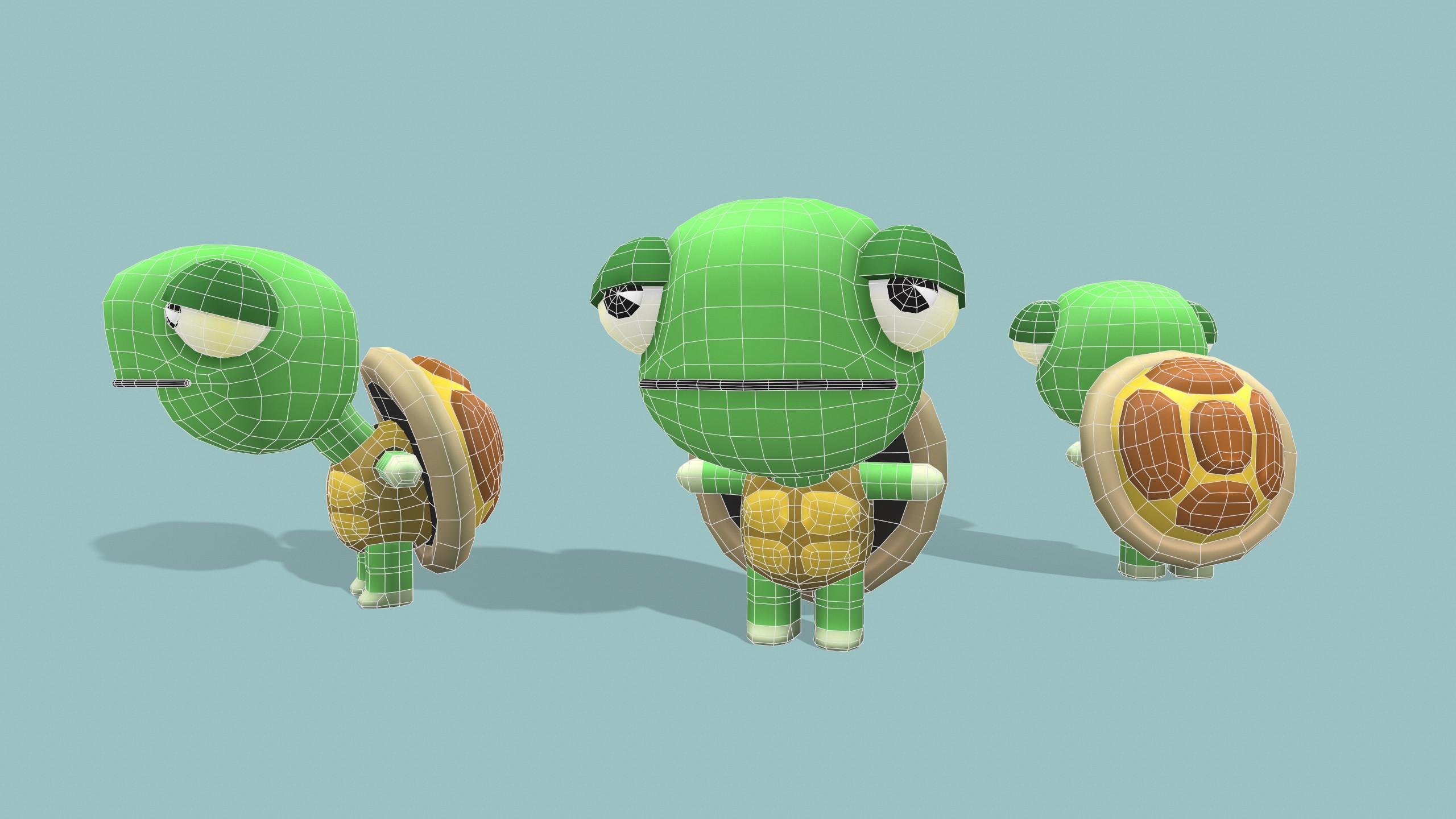 Tortoise wireframe
