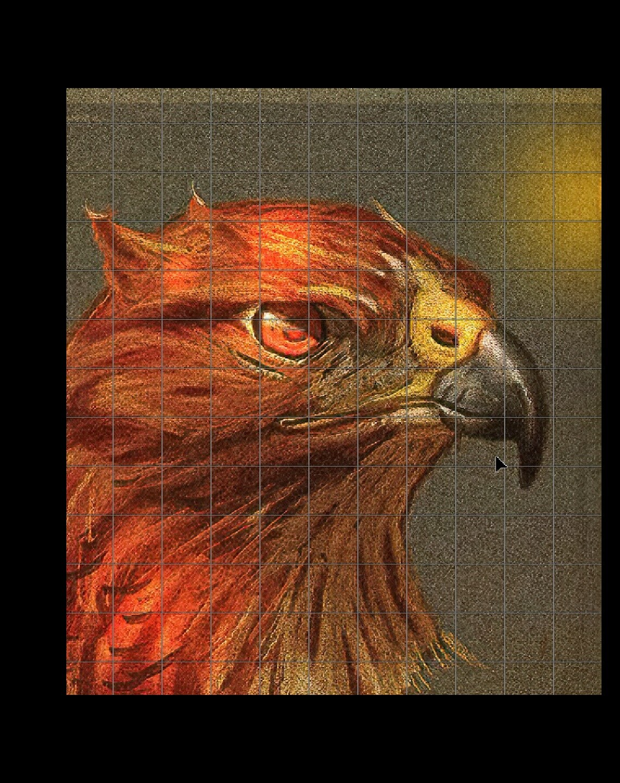 EAGLE GRID.