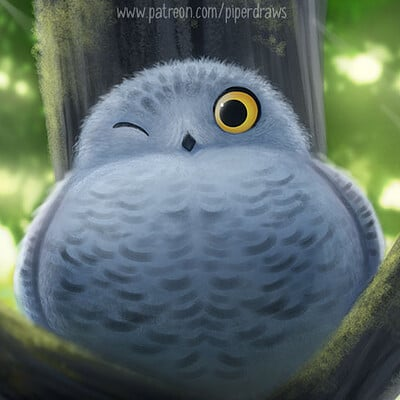 Piper thibodeau dp3040 illustration notsosnowyowl standardres