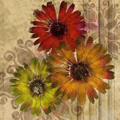 Waterlili jia 02 flowers orig