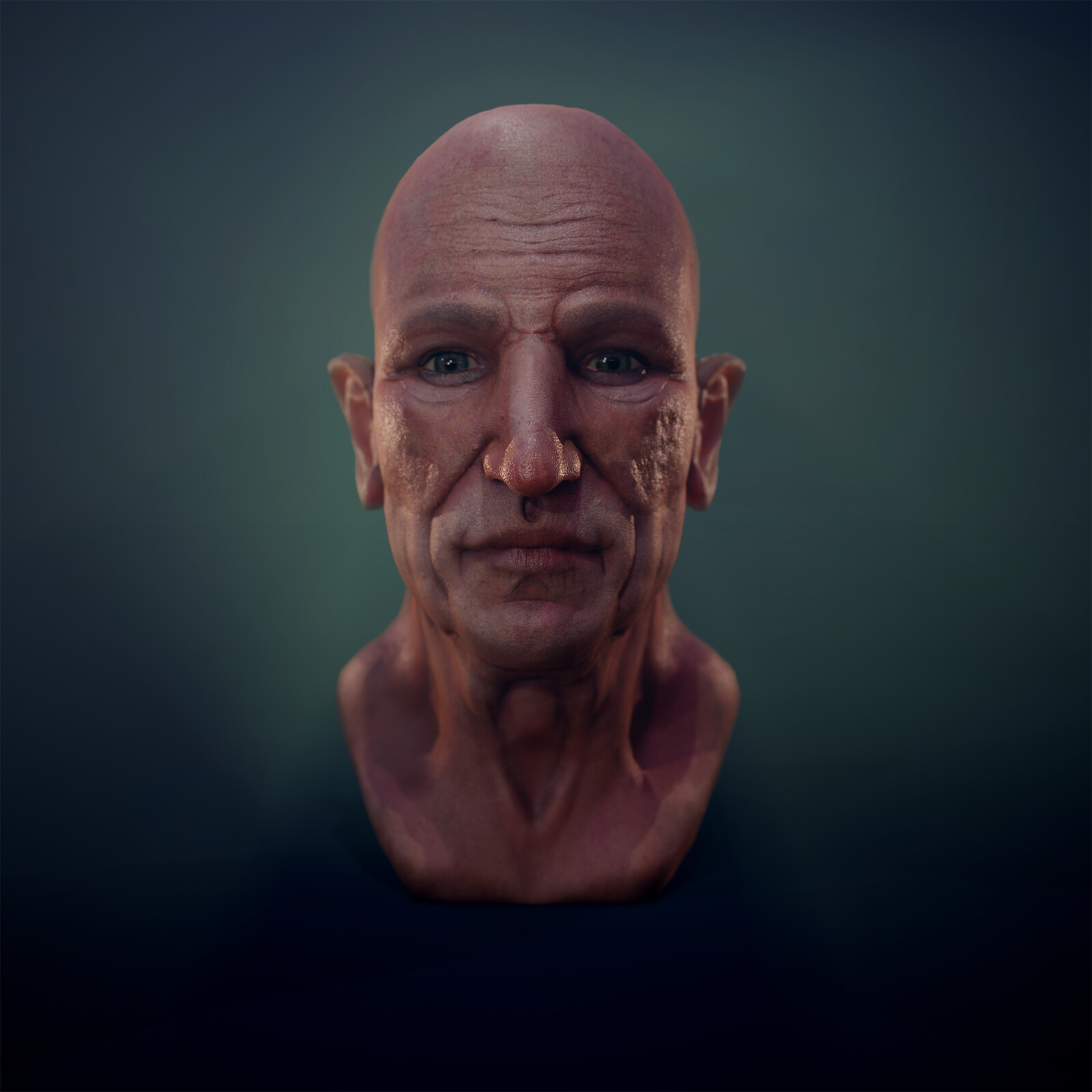 Anatomy of Ageing Head Sculpt Study - WIP