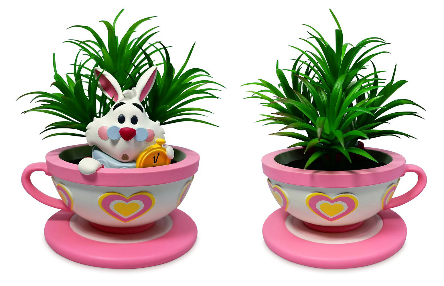 White Rabbit Succulent Planter - Actual Product Image