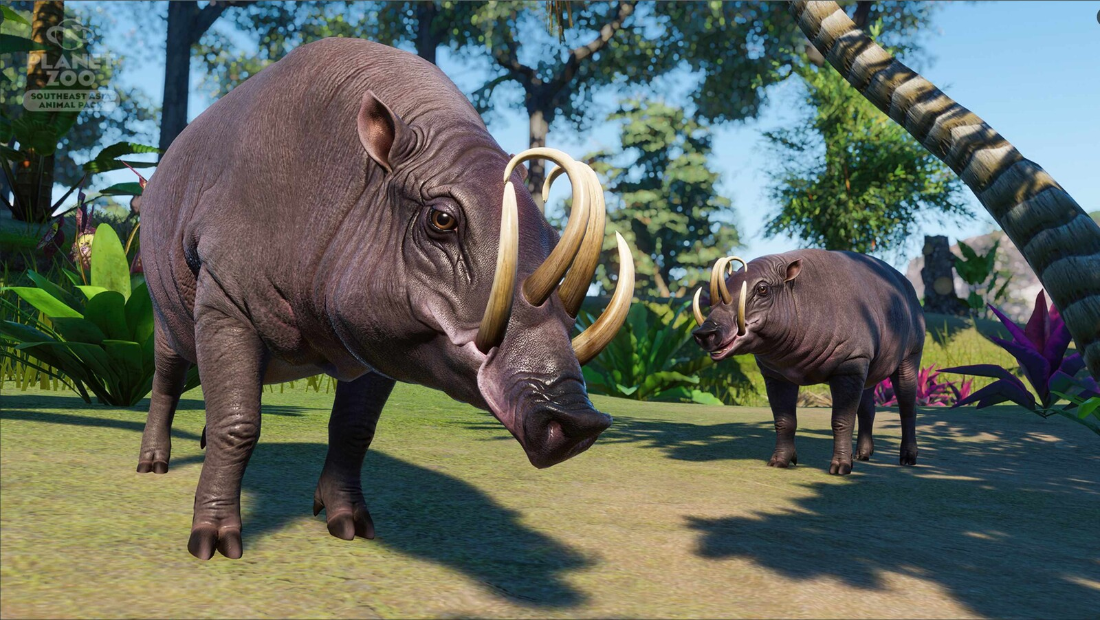 Planet Zoo Southeast Asia Pack - Babirusa