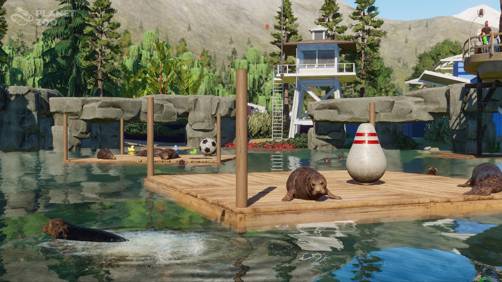 Planet Zoo - Count the Seals