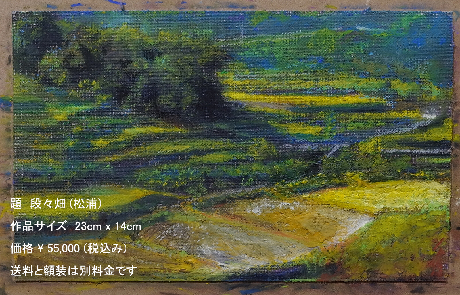 段々畑(松浦)