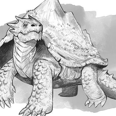 Laura galli dragon tortoise