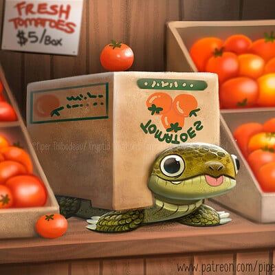 Piper thibodeau dp3062 illustration boxturtle standardres