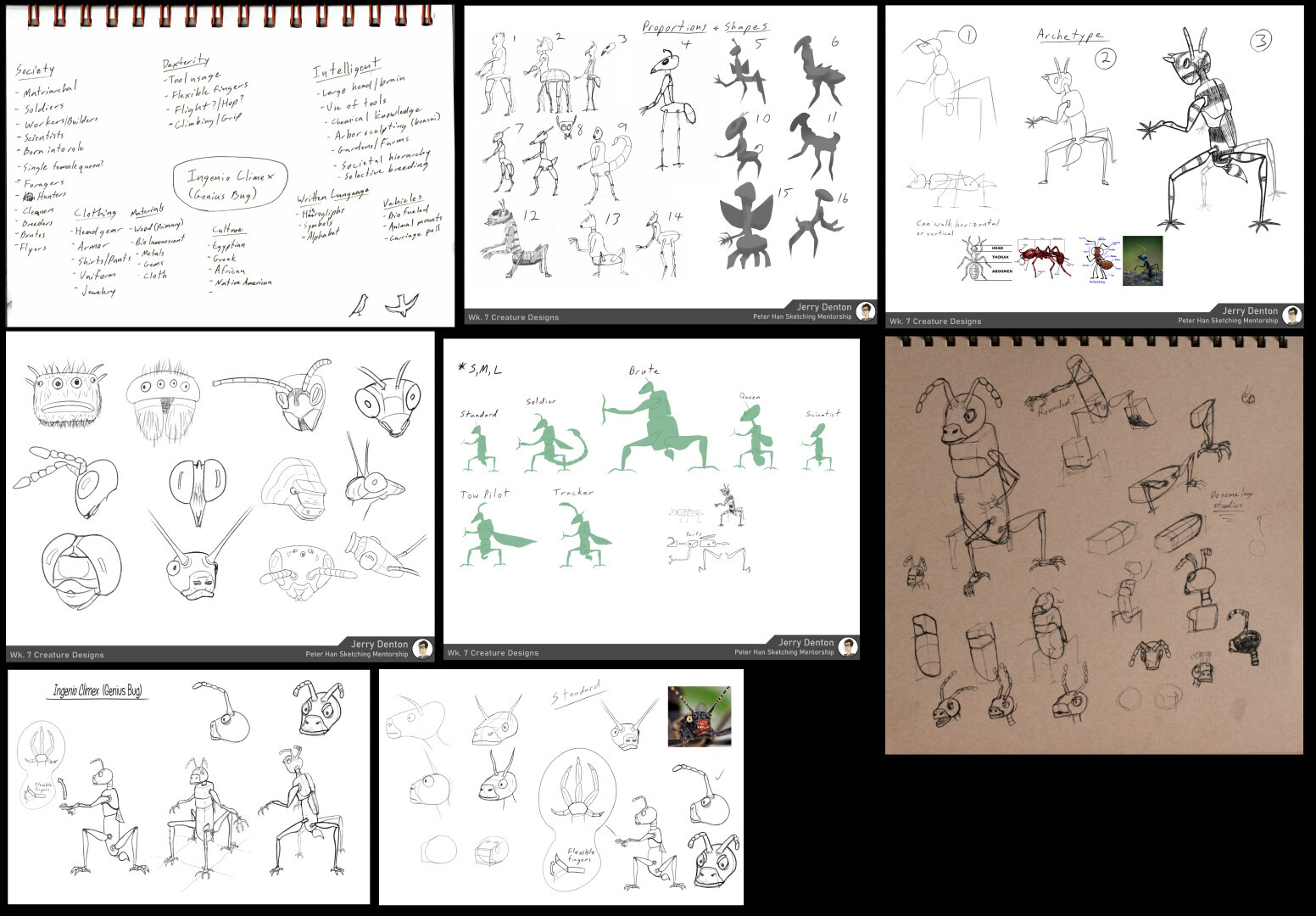 Exploration sketches for the Genius Bug