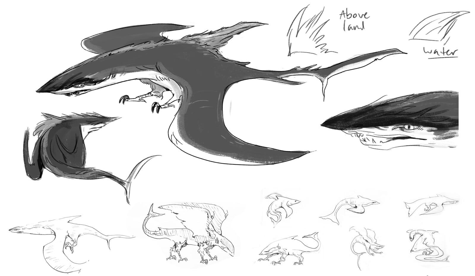 Bird-Shark Concept
